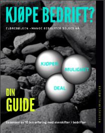 gratis guide – kjøpe bedrift